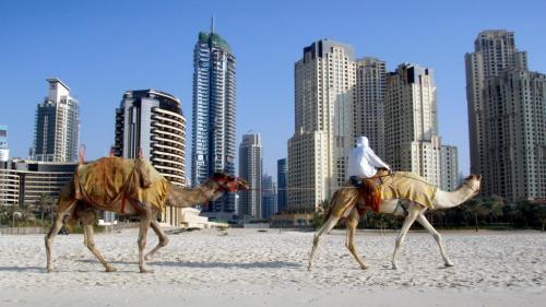The-United-Arab-Emirates