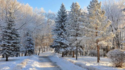 russian winter hd wallpapers 14